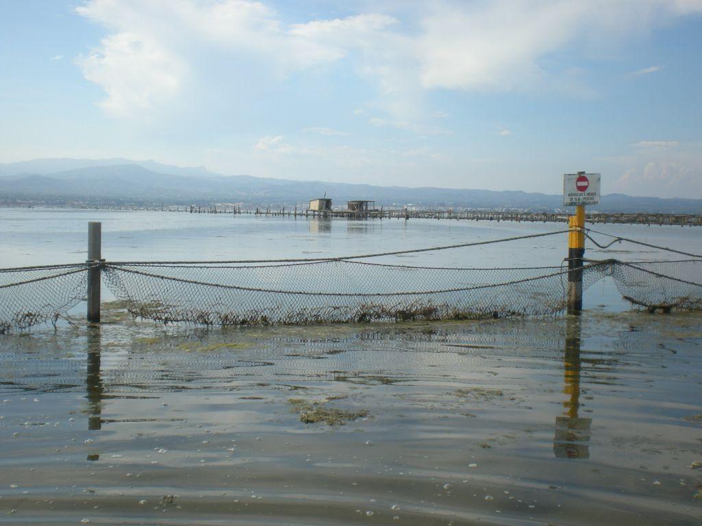 El delta exporta a França el 80% de l'ostra que es produeix a les badies 1