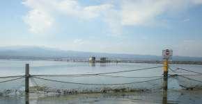 El delta exporta a França el 80% de l'ostra que es produeix a les badies